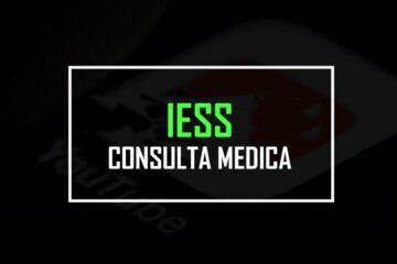 iess consulta medica