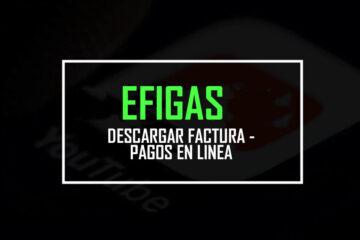 Efigas Factura